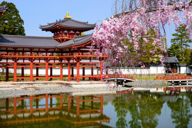 Byodo-im Tempel im Frühjahr stockbild