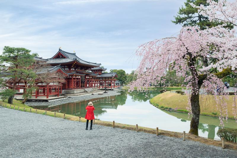 Byodo-in tempio in Uji, Kyoto, Giappone durante la molla Fiore di ciliegia a Kyoto, Giappone fotografia stock libera da diritti