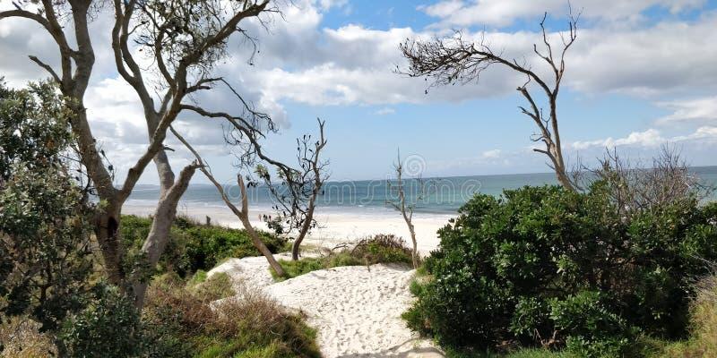 Byron Bay Shoreline royalty-vrije stock afbeelding