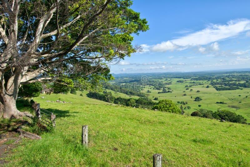 Byron Shire-landschap in sumer stock foto