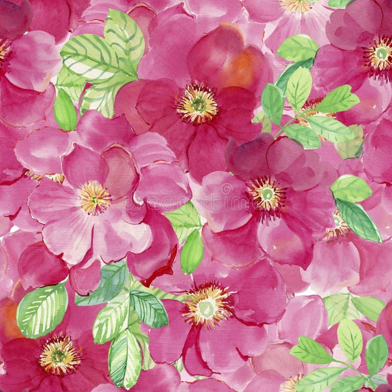 bystre kwiaty róże royalty ilustracja