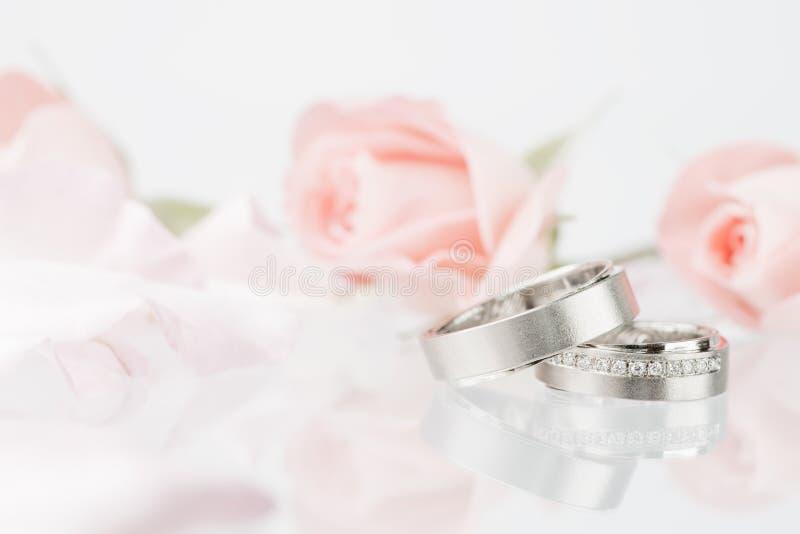 bystre pierścienie się tło białe fotografia royalty free