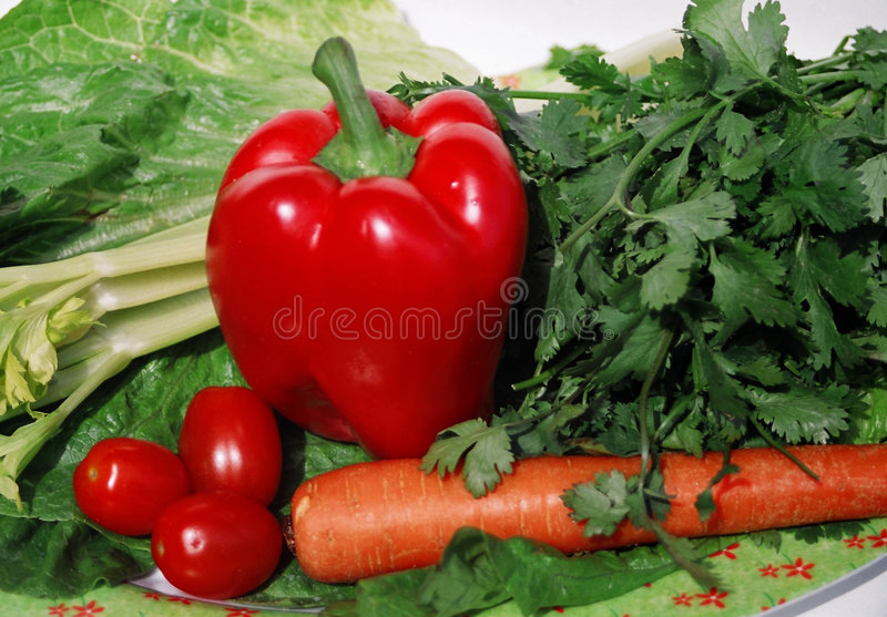 Download Bystre warzywa zdjęcie stock. Obraz złożonej z pieprze - 132820