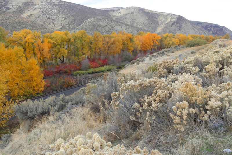 Byway каньона реки Yakima сценарный - цвета падения стоковые изображения