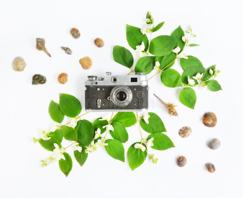 Cámara, conchas marinas y jazmín del vintage fotografía de archivo libre de regalías