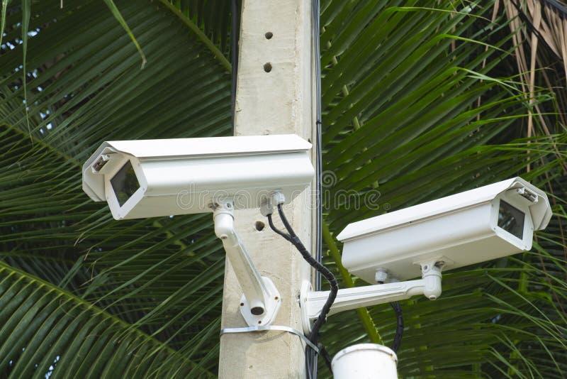 Cámara de seguridad del CCTV en parque imagenes de archivo