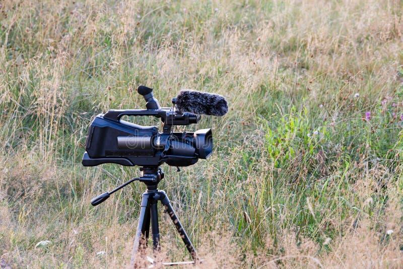 Cámara de vídeo profesional en el trípode Fauna de filmación documental Engranaje de la cinematografía en el prado fotos de archivo