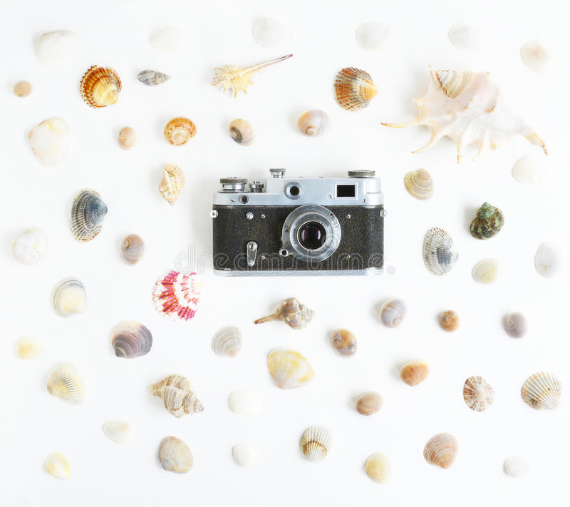 Cámara y conchas marinas del vintage fotografía de archivo libre de regalías