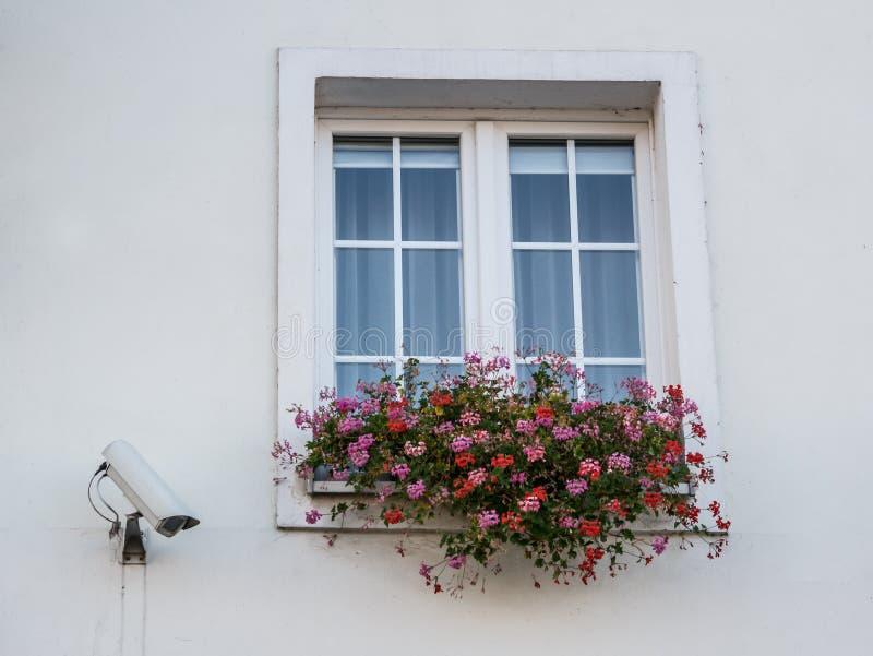 Cámaras de vigilancia en la ventana del edificio cerca de la ventana con las flores fotos de archivo libres de regalías