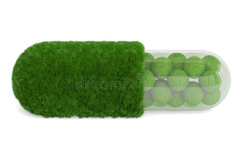 Cápsula do comprimido da grama, rendição 3D ilustração stock