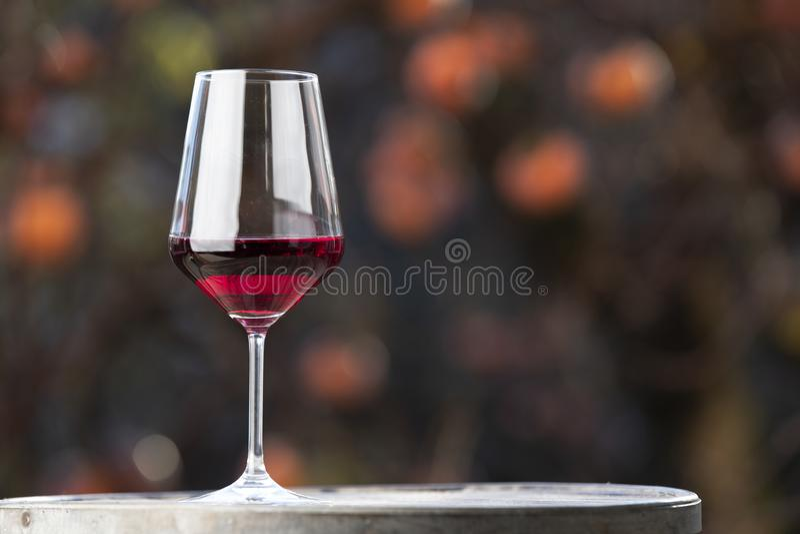 Cápsula e vinho horizontais imagens de stock royalty free