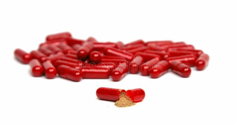 Cápsula roja interior fotografía de archivo libre de regalías