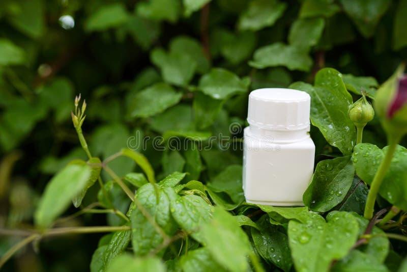 Cápsulas de la vitamina en fondo de la naturaleza medicina herbaria, concepto de atención sanitaria fotografía de archivo libre de regalías