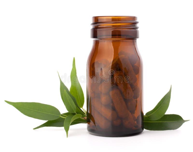 Cápsulas herbarias de la droga en botella de cristal marrón. Medicina alternativa fotografía de archivo