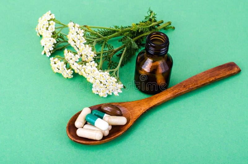 Cápsulas médicas ervais, comprimidos das plantas medicinais no fundo verde fotografia de stock royalty free