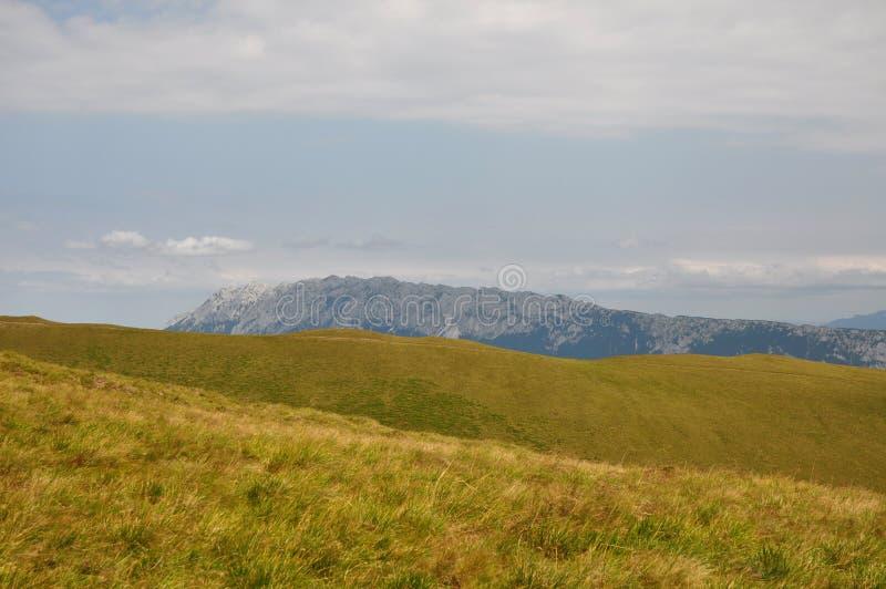 Cárpatos, Rumania fotografía de archivo libre de regalías
