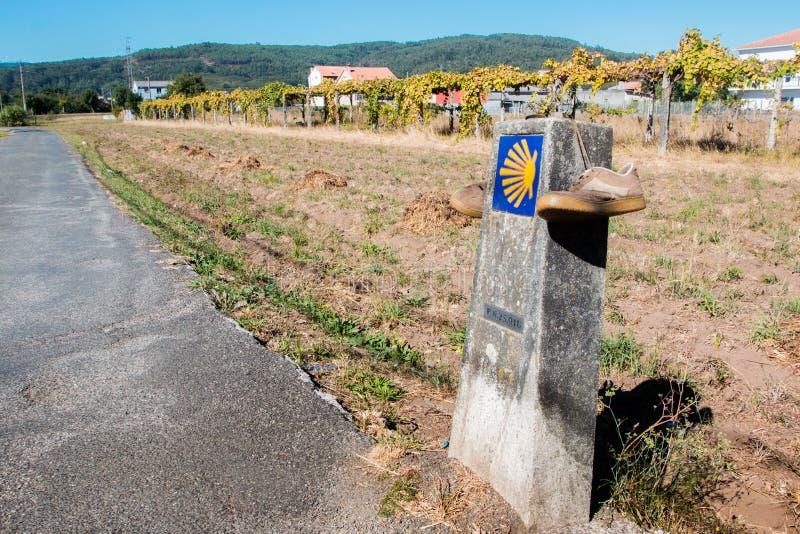 Cáscara de concha de peregrino y flecha amarilla La manera a Santiago de Compostela fotos de archivo libres de regalías