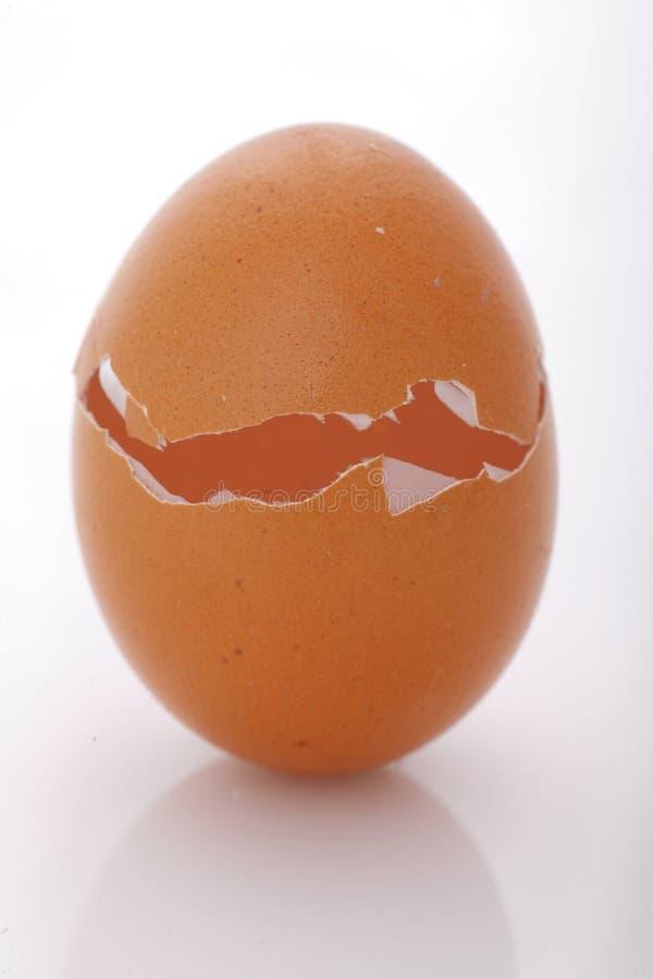 Cáscara de huevo imagen de archivo