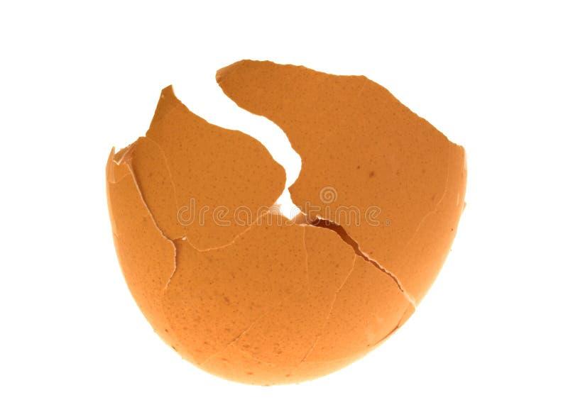 Cáscara de huevo agrietada fotografía de archivo