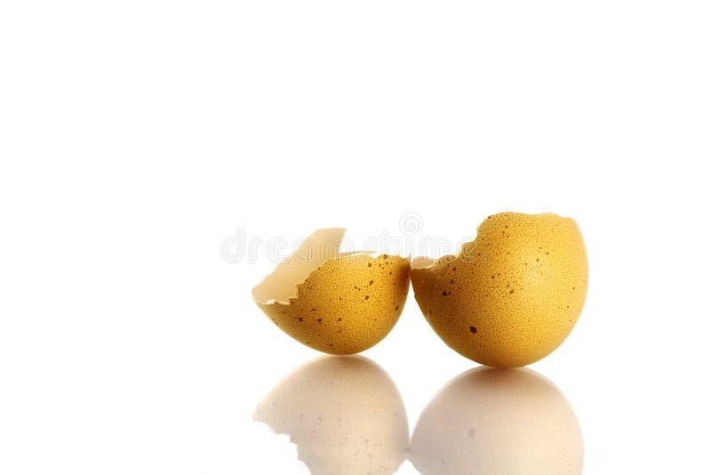 Cáscara de huevo quebrada aislada en blanco fotos de archivo