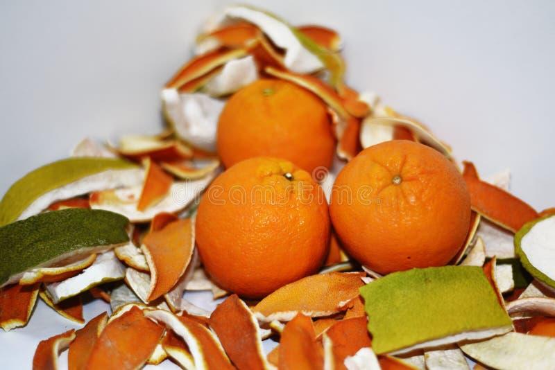 Cáscara secada de la naranja y de la fruta cítrica fotos de archivo libres de regalías