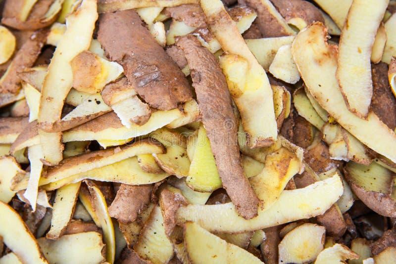 Cáscaras de patata imagen de archivo libre de regalías