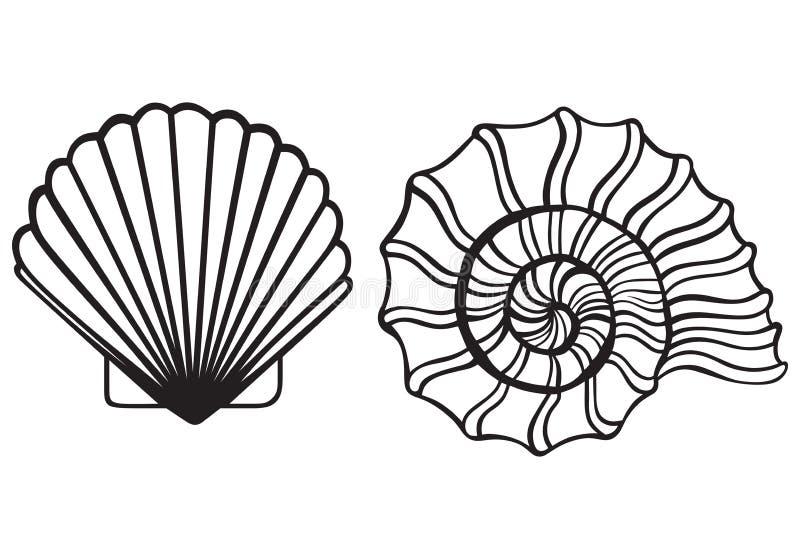 Cáscaras del mar libre illustration
