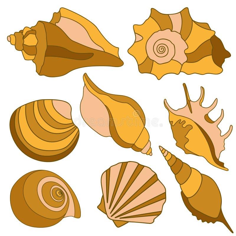 Cáscaras del mar del vector Elementos del diseño de las vacaciones de verano ilustración del vector