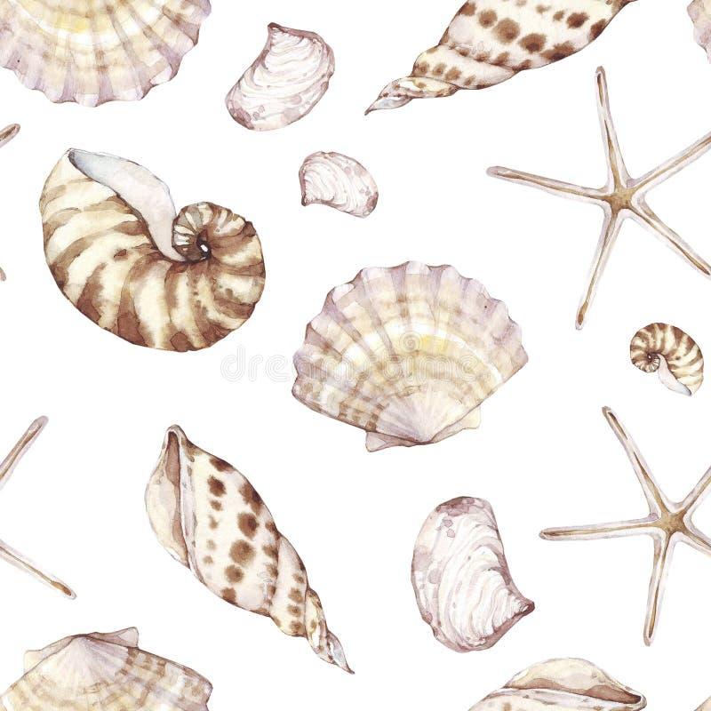 Cáscaras del mar, modelo inconsútil, fondo marino ilustración del vector