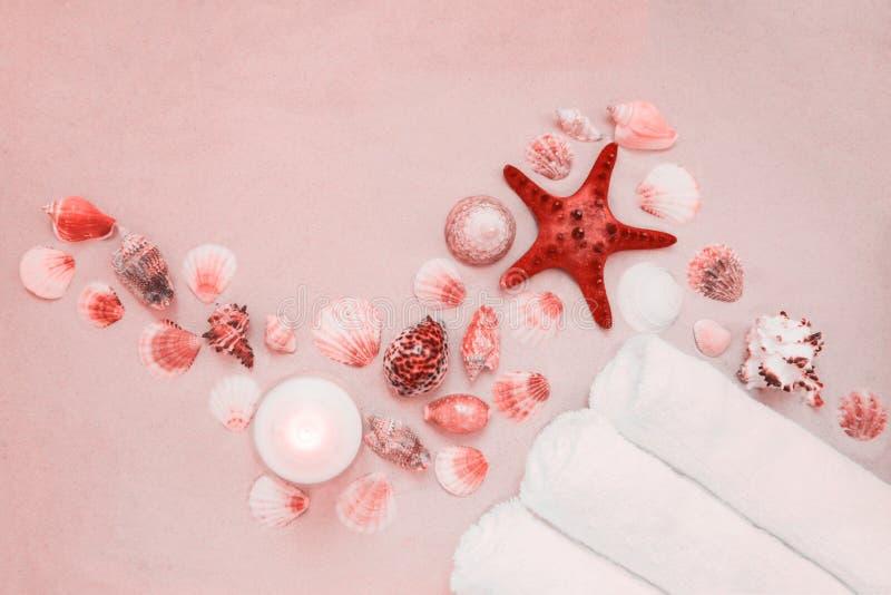 Cáscaras del mar y pescados rojos de la estrella en la playa arenosa con el espacio de la copia para el texto fotografía de archivo