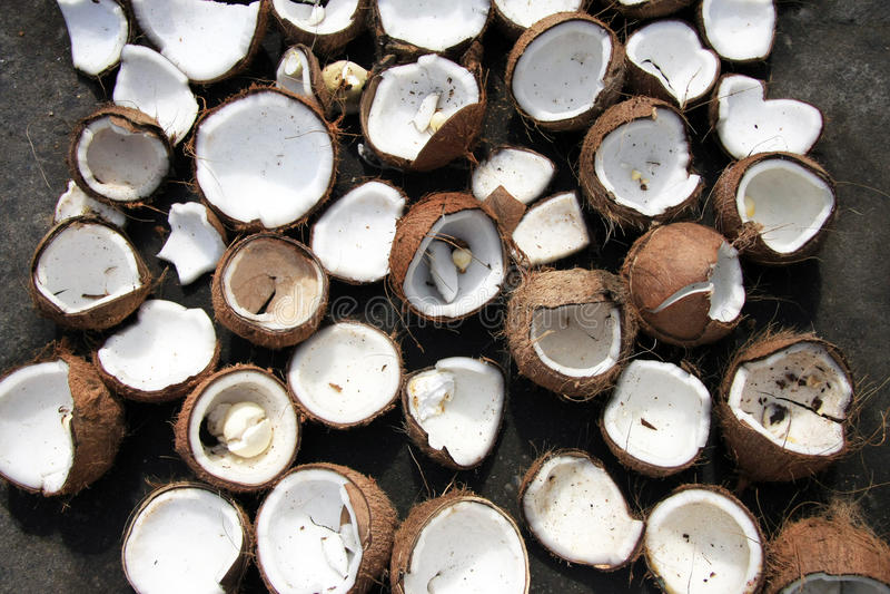 Cáscaras quebradas del coco en la tierra fotografía de archivo