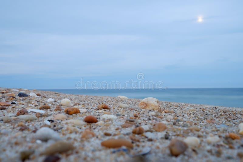Cáscaras y piedras machacadas durante una salida de la luna en una playa en la oscuridad imagen de archivo