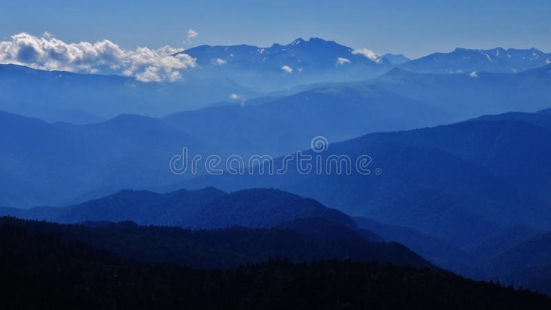 Cáucaso de surpresa fotografia de stock