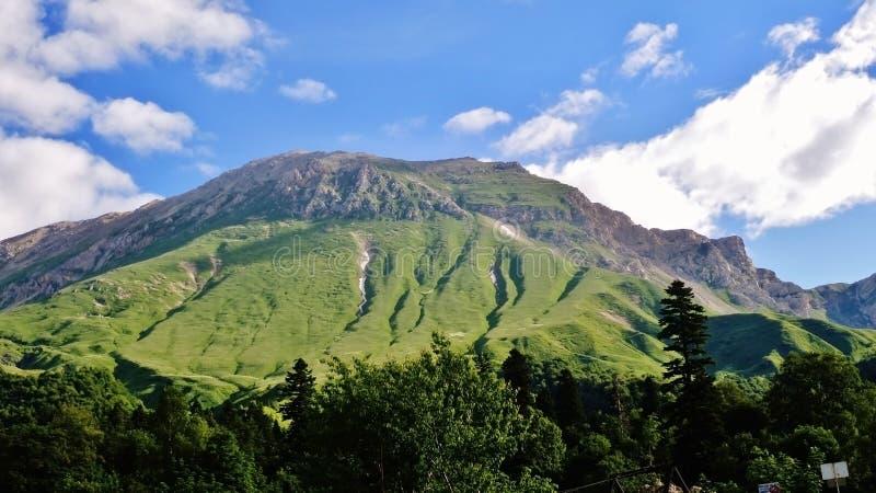 Cáucaso de surpresa fotos de stock