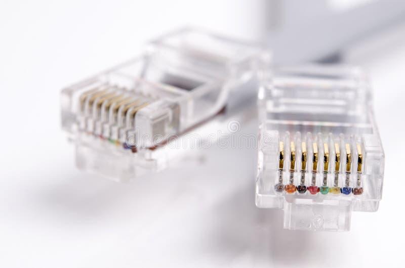 Câble de connexion de Grey Internet et détail de prise d'isolement sur le fond blanc photographie stock libre de droits
