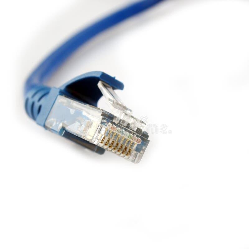 Câble de la bande large RJ-45 images libres de droits