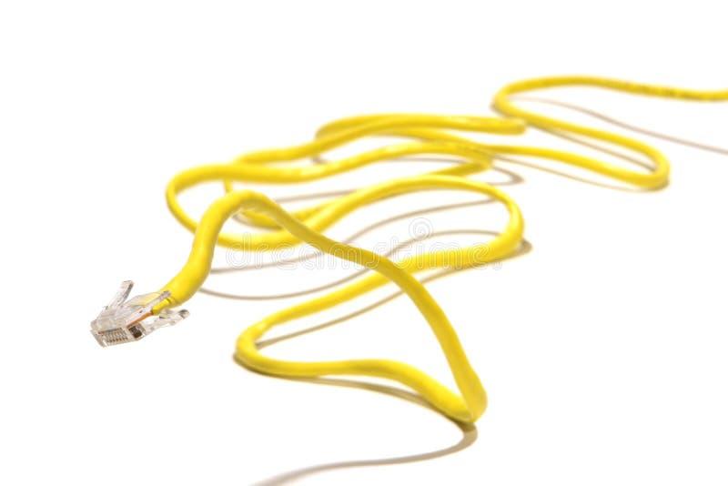 Câble de réseau informatique image libre de droits