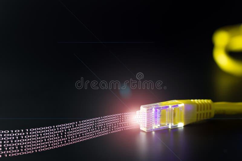 Câble de réseau informatique image stock