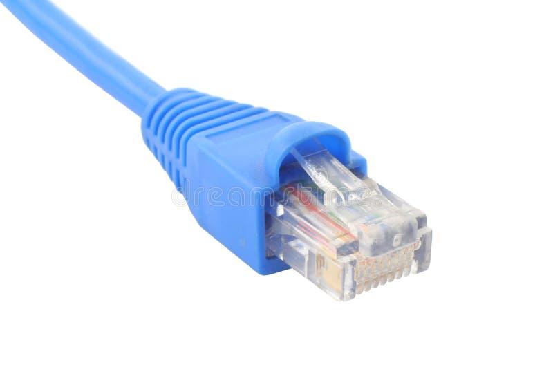 Câble RJ-45 sur le fond blanc pur #2 image libre de droits