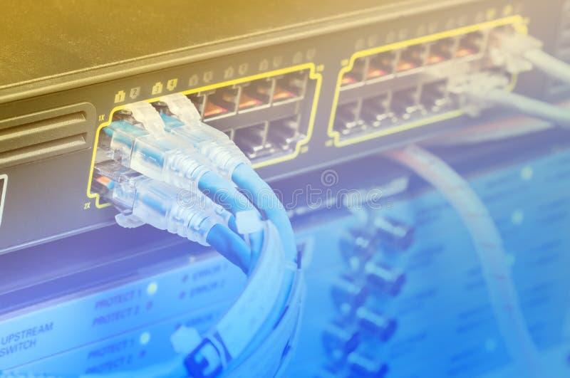 Câbles d'Ethernet d'UTP photo stock