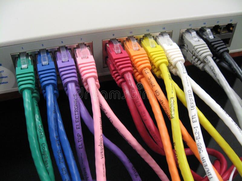 Câbles de correction d'Ethernet de Cat5e Cat6 image stock