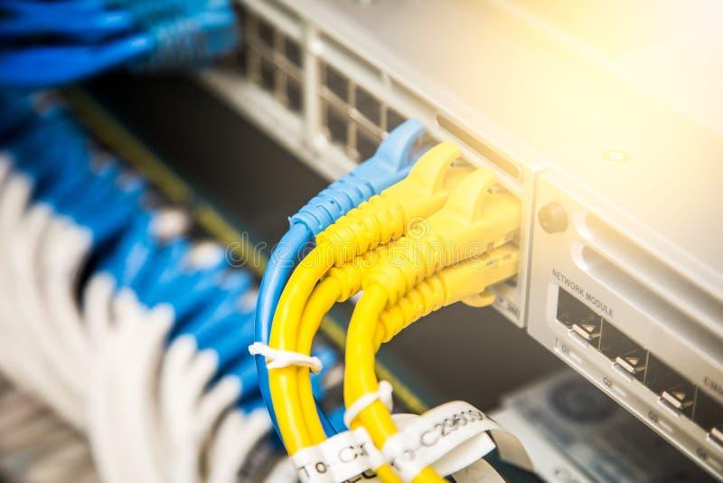 Câbles de réseau connectés image libre de droits