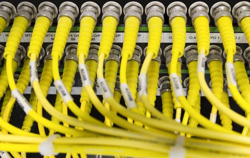 Câbles jaunes de réseau reliés au serveur images stock