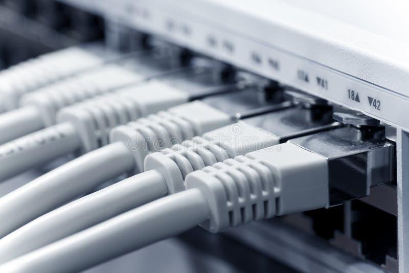 Câbles LAN Connectés à un commutateur photographie stock