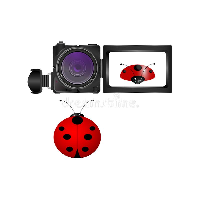 Câmara de vídeo e joaninha digitais realísticos no fundo branco ilustração stock
