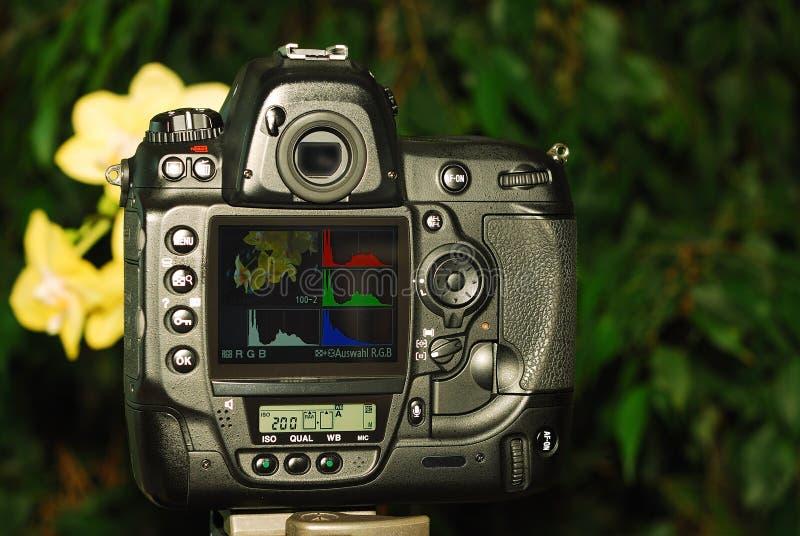 Câmara digital (vista traseira) fotos de stock royalty free