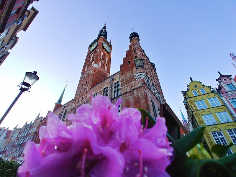 C?mara municipal bonita no centro de Gdansk fotografia de stock