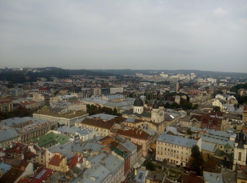 Câmara municipal de Lviv fotografia de stock royalty free
