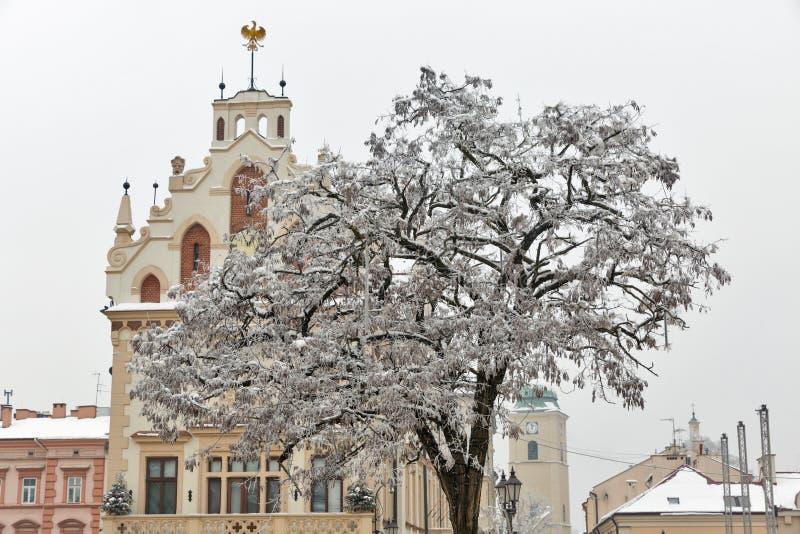 Câmara municipal de Rzeszow, Polônia fotos de stock