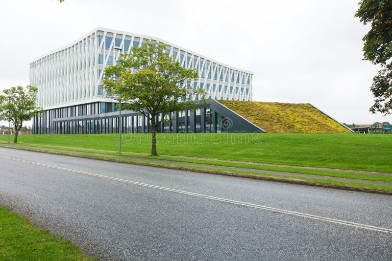 Câmara municipal de Viborg, exterior imagem de stock royalty free